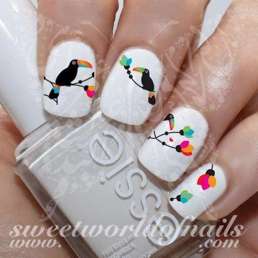 paznokcie papuga