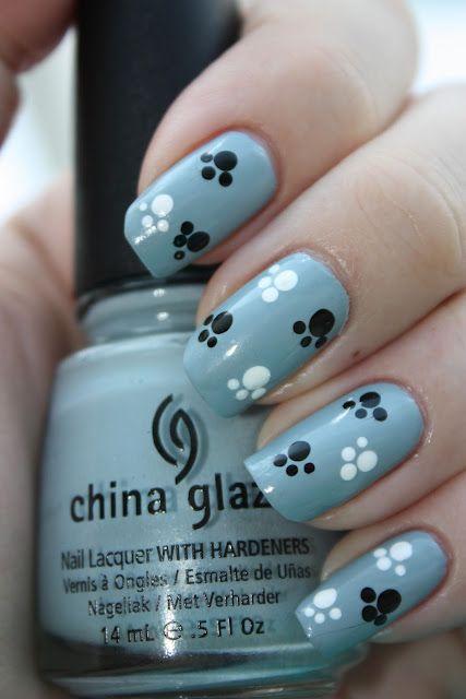 paznokcie pies