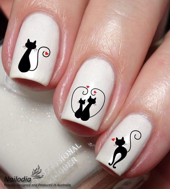 paznokcie kot